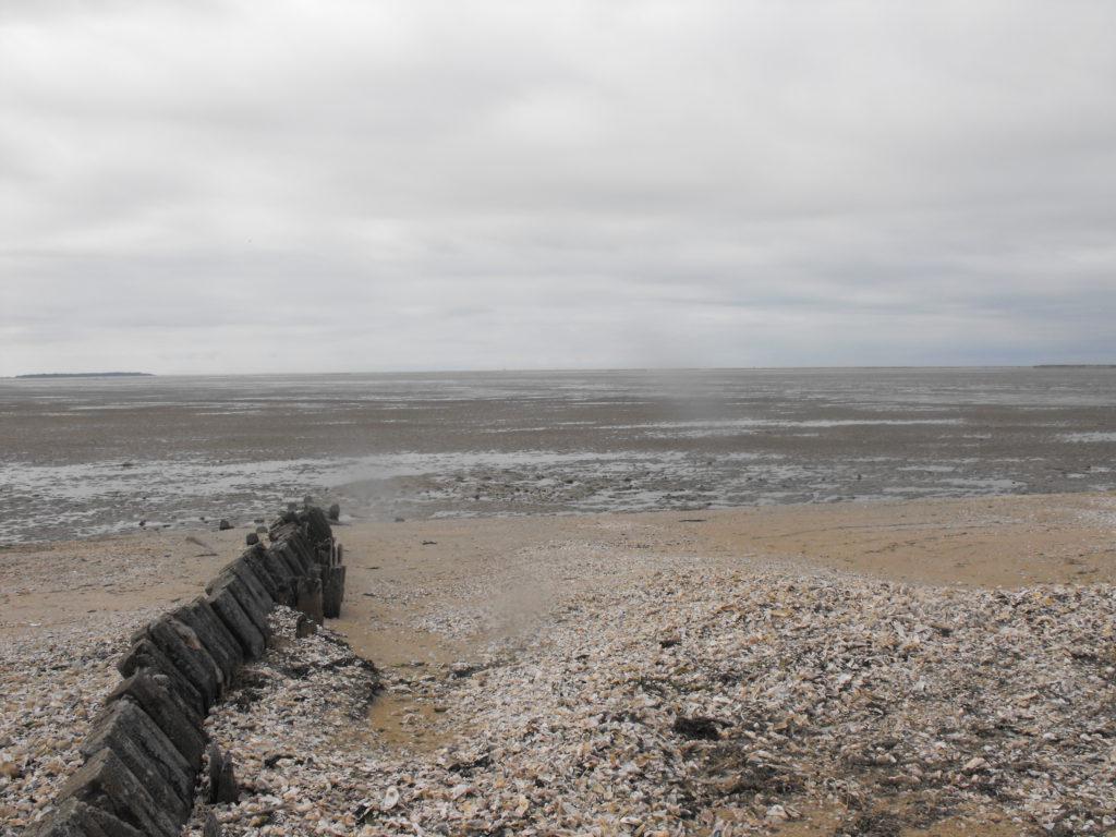 Moře odliv La Rochelle